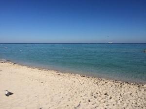 Miami Beach in winter